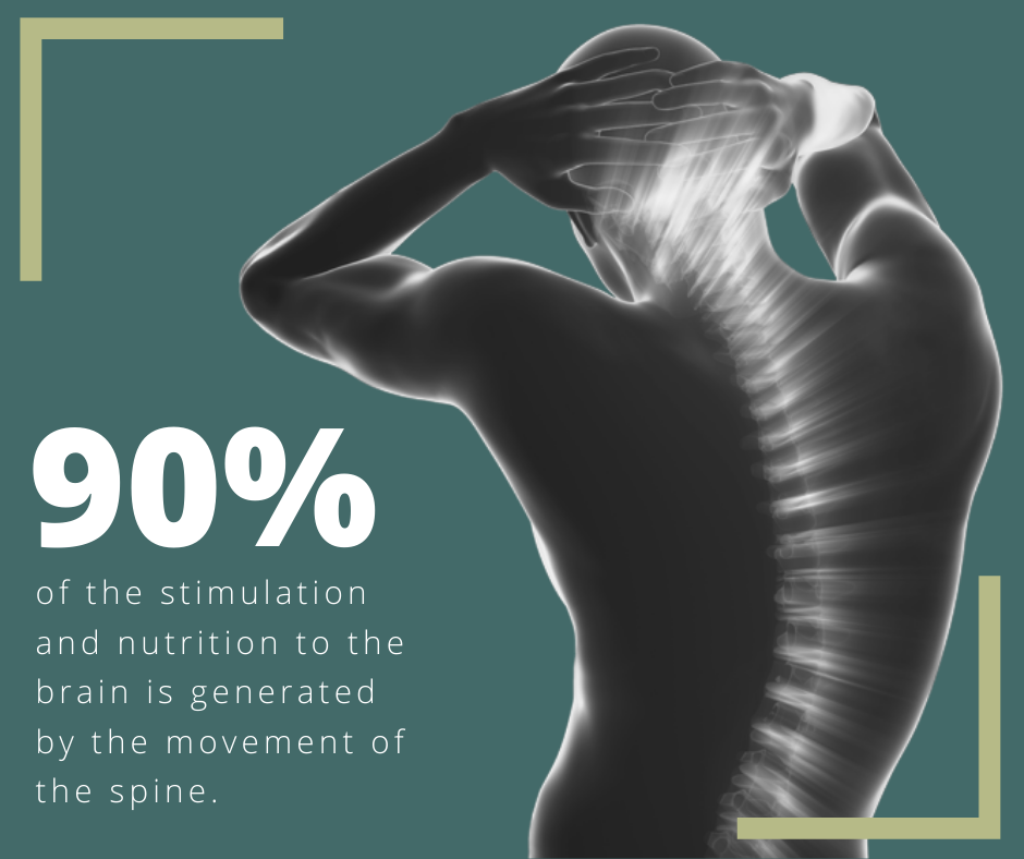 Movement of the Spine