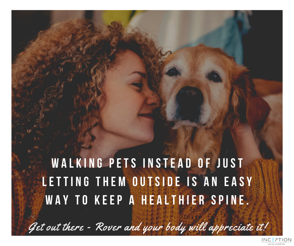 Walking with your pet
