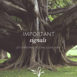 Pain Is An Important Signal Newsletter
