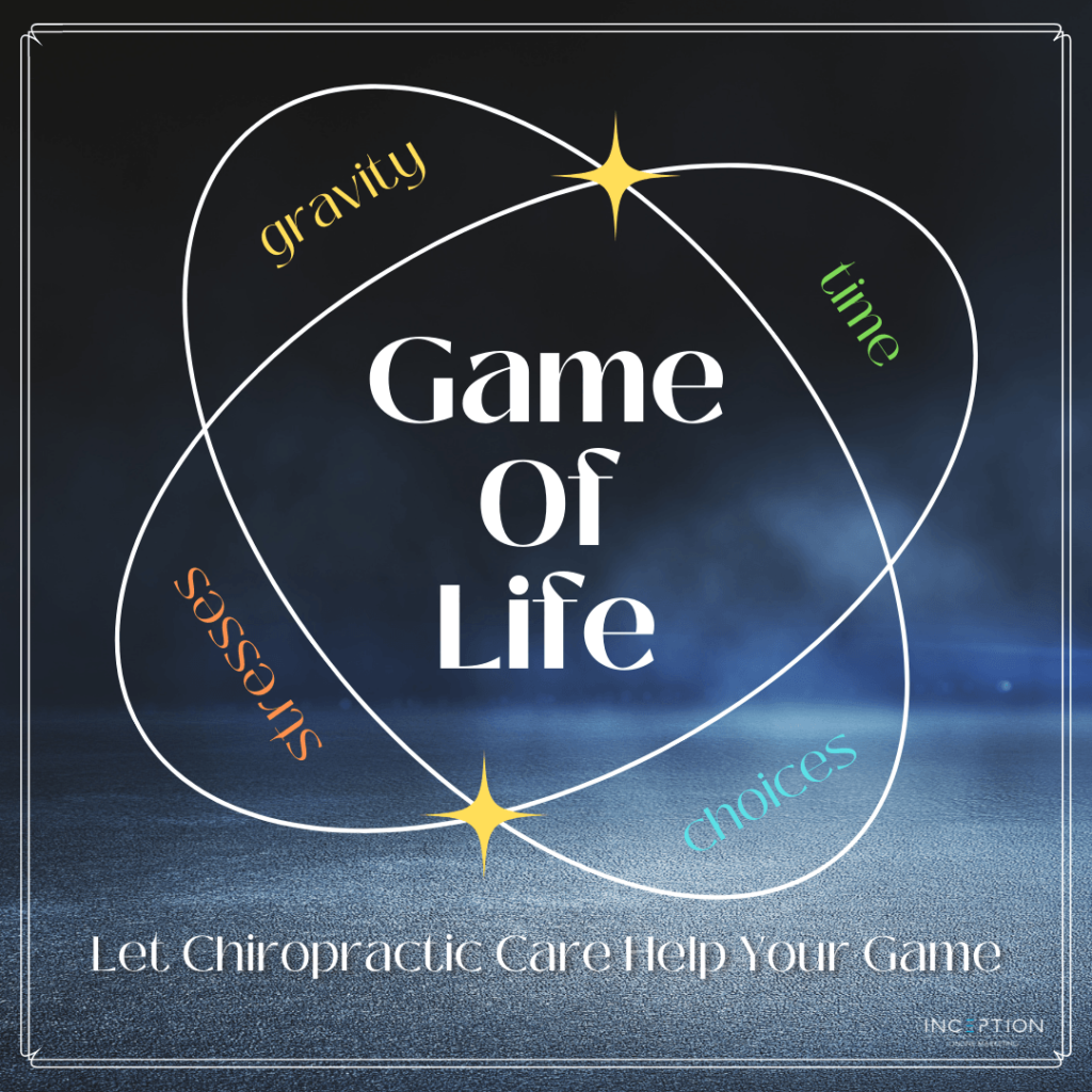 The Game of Life Newsletter