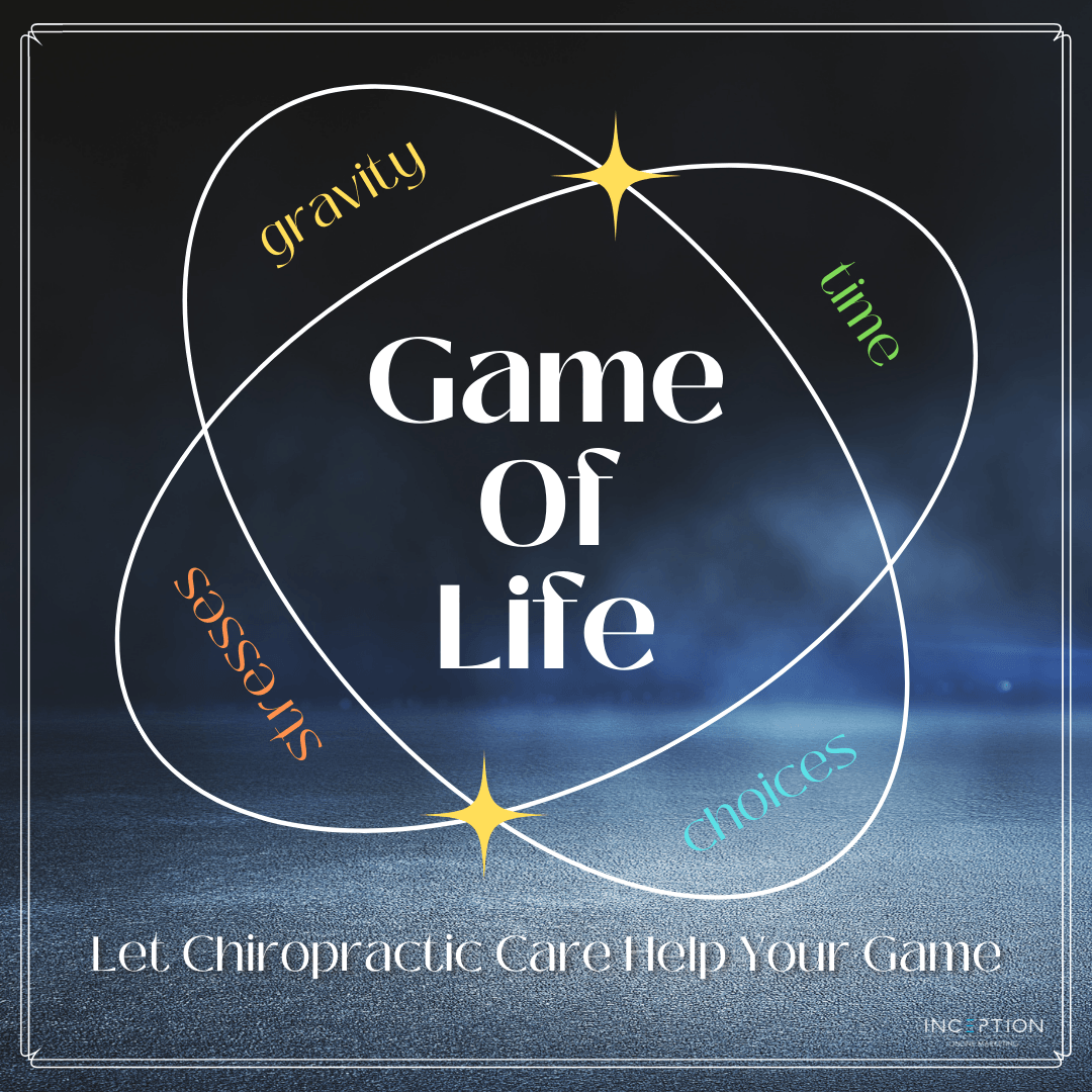 The-Game-of-Life.png